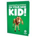 Congratulations on your new KID - thumbnail