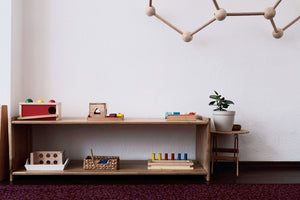 Montessori Shelves