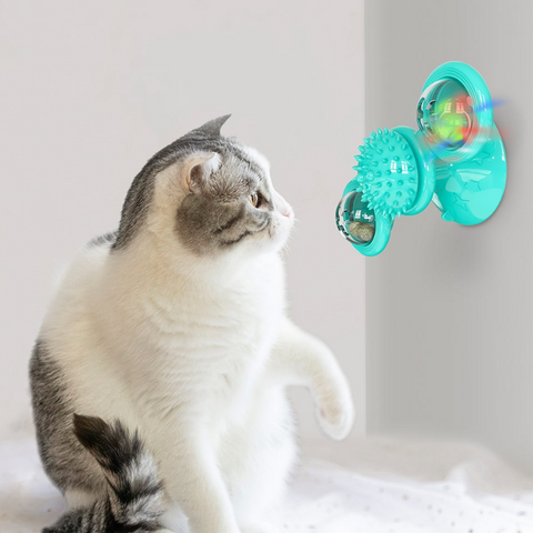 Proactive Cat Toy with cat