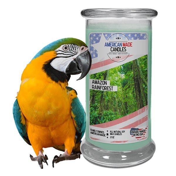 Amazon Rainforest American Made Candle-American Made Candles | Family Owned. American Made. Jewelry Candles-The Official Website of Jewelry Candles - Find Jewelry In Candles!