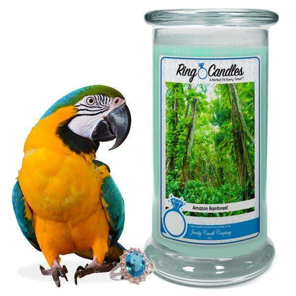 Amazon Rainforest Ring Candle-Amazon Rainforest Ring Candle-The Official Website of Jewelry Candles - Find Jewelry In Candles!