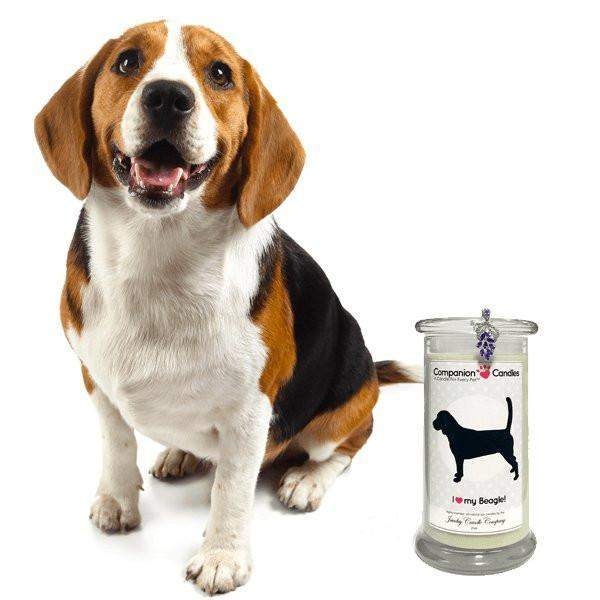 I Love My Beagle! Pet Candle - Companion Candles-Companion Candles-The Official Website of Jewelry Candles - Find Jewelry In Candles!
