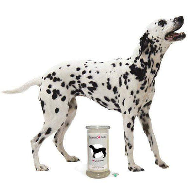 I Love My Dalmation! - Companion Candles-Companion Candles-The Official Website of Jewelry Candles - Find Jewelry In Candles!