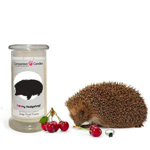 I Love My Hedgehog! - Companion Candles-Companion Candles-The Official Website of Jewelry Candles - Find Jewelry In Candles!