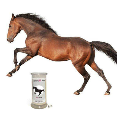 I Love My Horse! - Companion Candles-Companion Candles-The Official Website of Jewelry Candles - Find Jewelry In Candles!