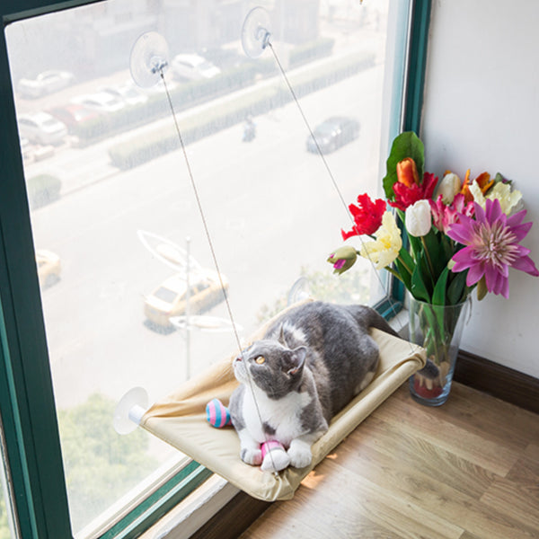 Senna Window Cat Perch