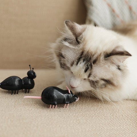[MPK Store] Battery Operated Cat Toy, Black Ant/Mouse, White Ant/Mouse, Electric Fast Moving Toy, Cats-go-crazy Toy Series