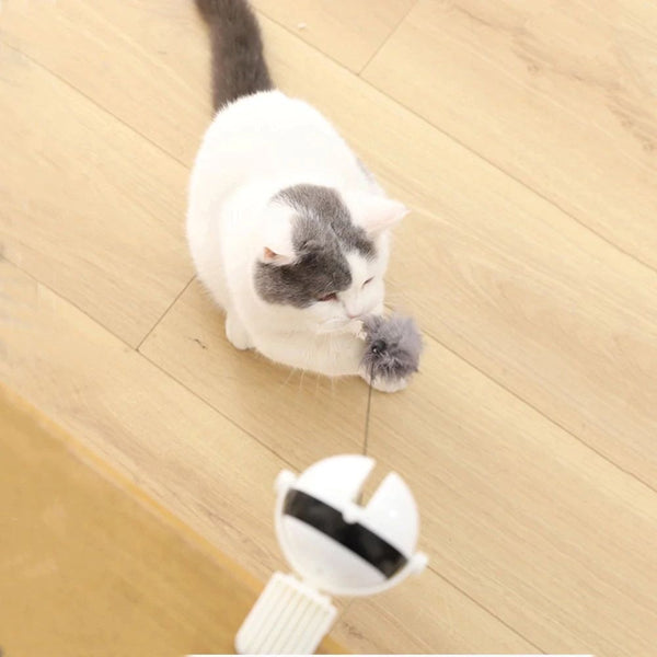 Dani Interactive Cat Teaser Toy