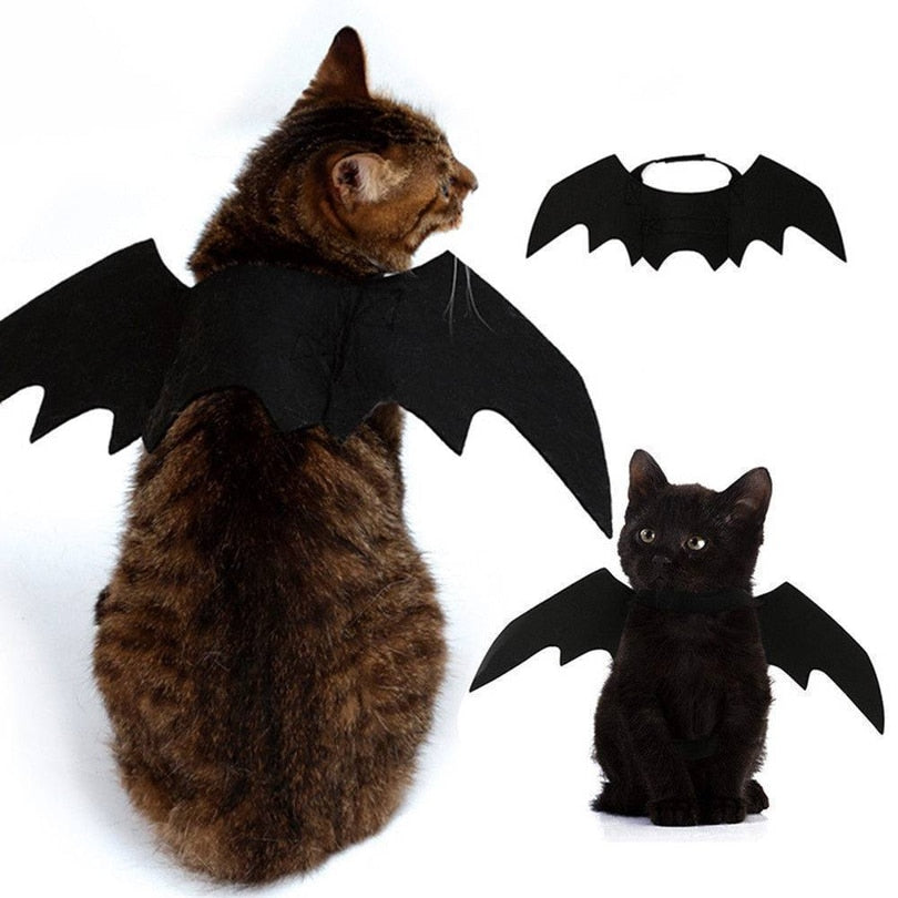 Halloween Cat Costume Small Pet Cat Bat Wings - Rite Gadgets