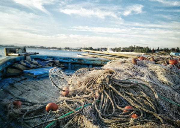 How These Companies are Helping Solve Ocean Waste - One Net at a Time
