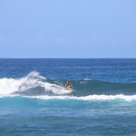 Confessions of a Surfer Girl Interview