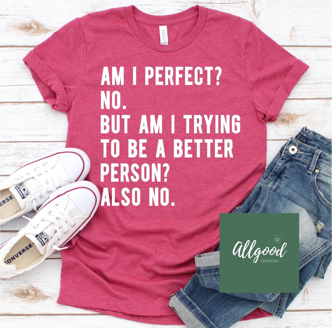 Am I Perfect? T-Shirt