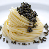 Caviar Calvisius Tradition Royal - 30g