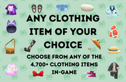 Any Clothing of Your Choice