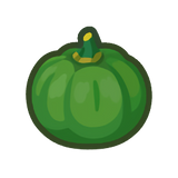 Green Pumpkin (10)