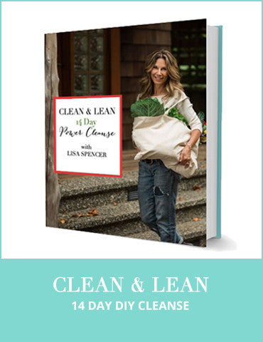 Clean & Lean 14 Day VIP VEGAN GUIDED Power Cleanse Program