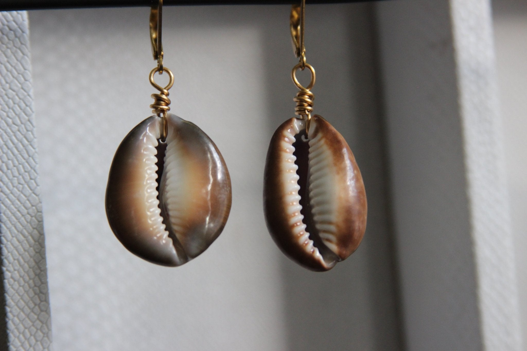 Brown Cowrie Shell Earrings - We Love Brass