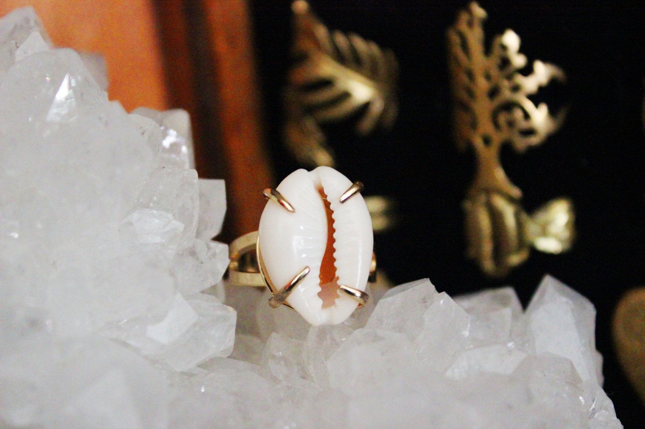 Claws Out Cowrie Shell Ring - Golden Treasure Box