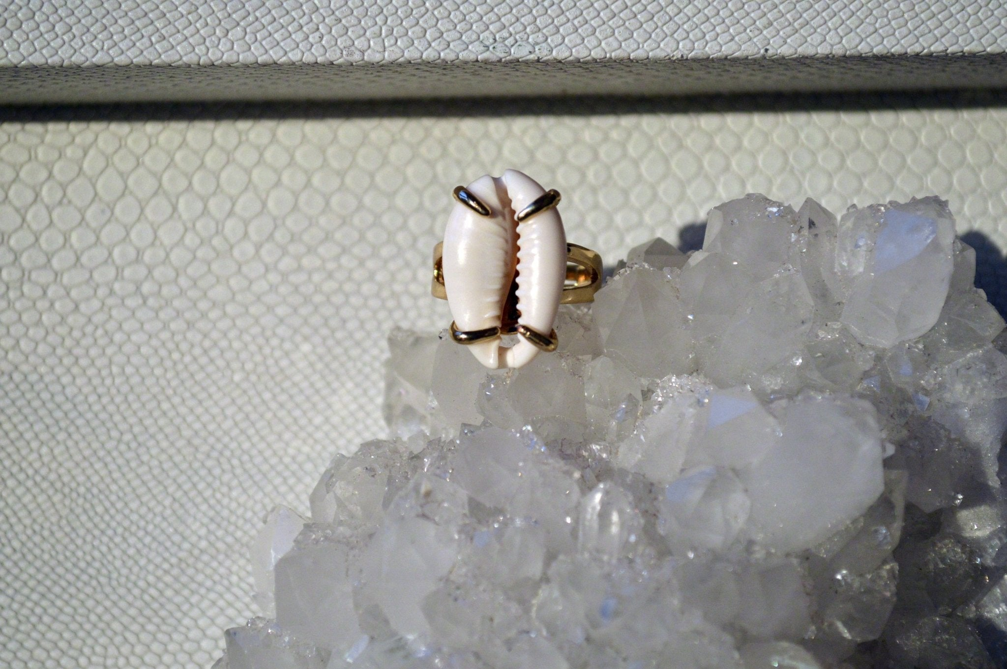 Claws Out Cowrie Shell Ring - We Love Brass
