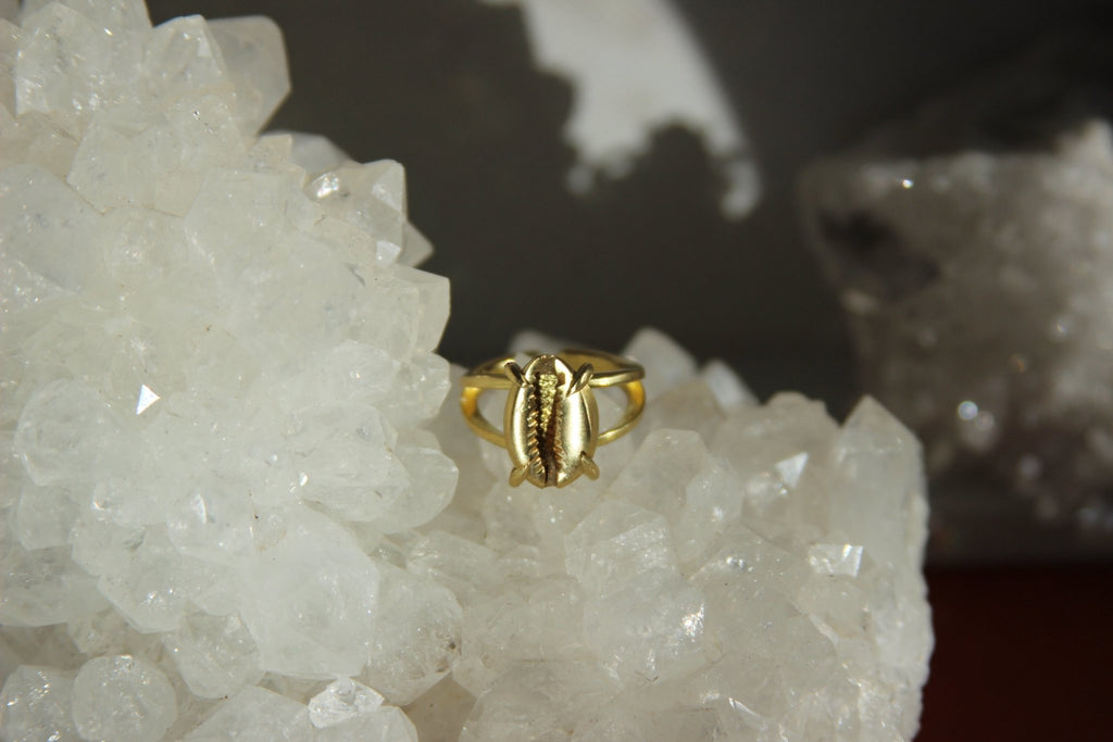 Golden Cowrie Brass Ring - We Love Brass