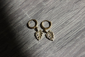 Mini Monstera Brass Leaf Earrings - We Love Brass