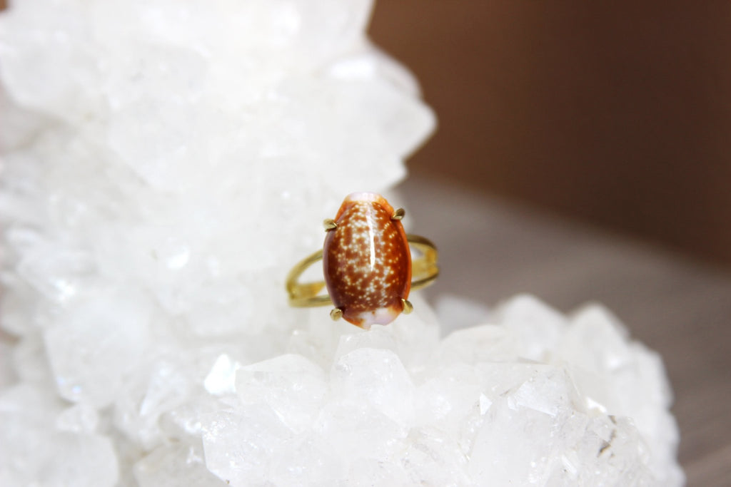 Orange Cowrie Shell Brass Ring - We Love Brass