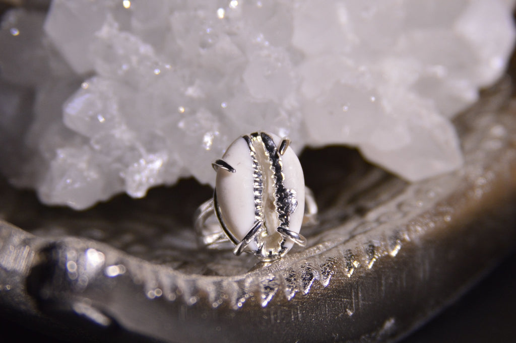 Silver Cowrie Shell Ring - We Love Brass