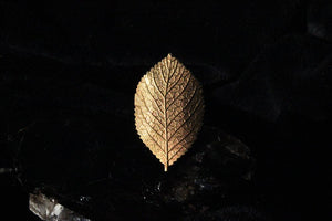 Sweet Birch Leaf Ring - Golden Treasure Box