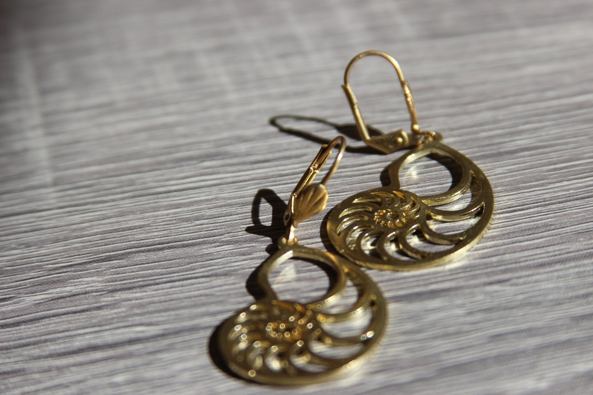 The Nautilus Brass Earrings - We Love Brass