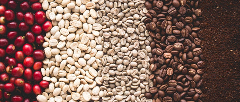 Method for Roasted Coffee At Home Blog by Unrest Coffee in Hampden Maine