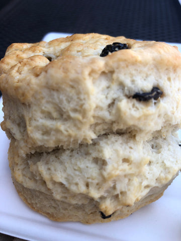 A close-up of a fluffy English scone with raisins. The top of the scone is golden brown.