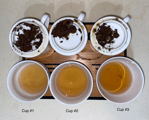 Three different white cups are filled half-way with tea. They are labeled Cups 1-3. Each cup of tea has a slightly different liquor. Behind the cups, the wet leaves are also shown.