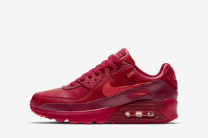"GS Nike Air Max 90 ""City Special /  CHI"""