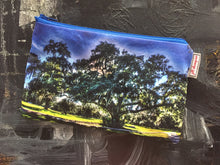 Load image into Gallery viewer, City Park Oak Bag