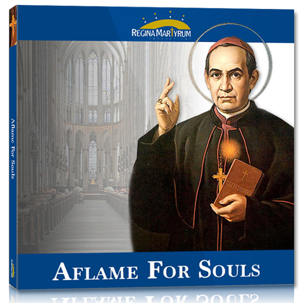 Aflame For Souls – St. Anthony Mary Claret
