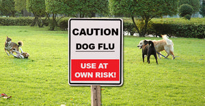 The Dog Flu Epidemic: The Real Truth - Article Reprint