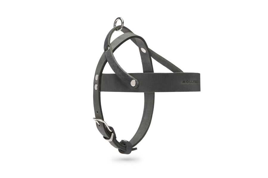 Butter Leather Dog Harness - Timeless Gray