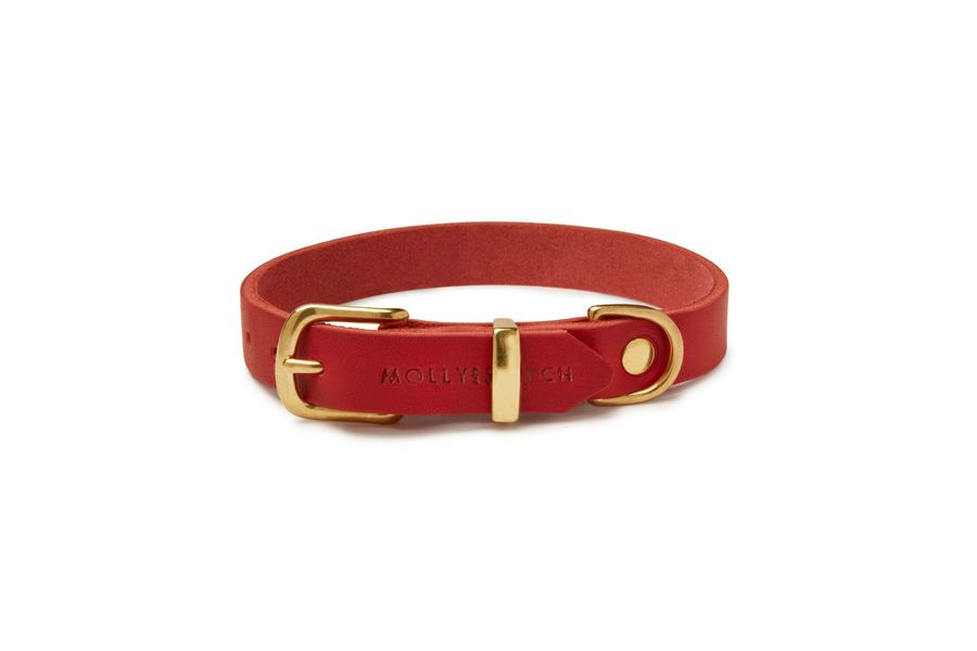Butter Leather Dog Collar - Chili Red