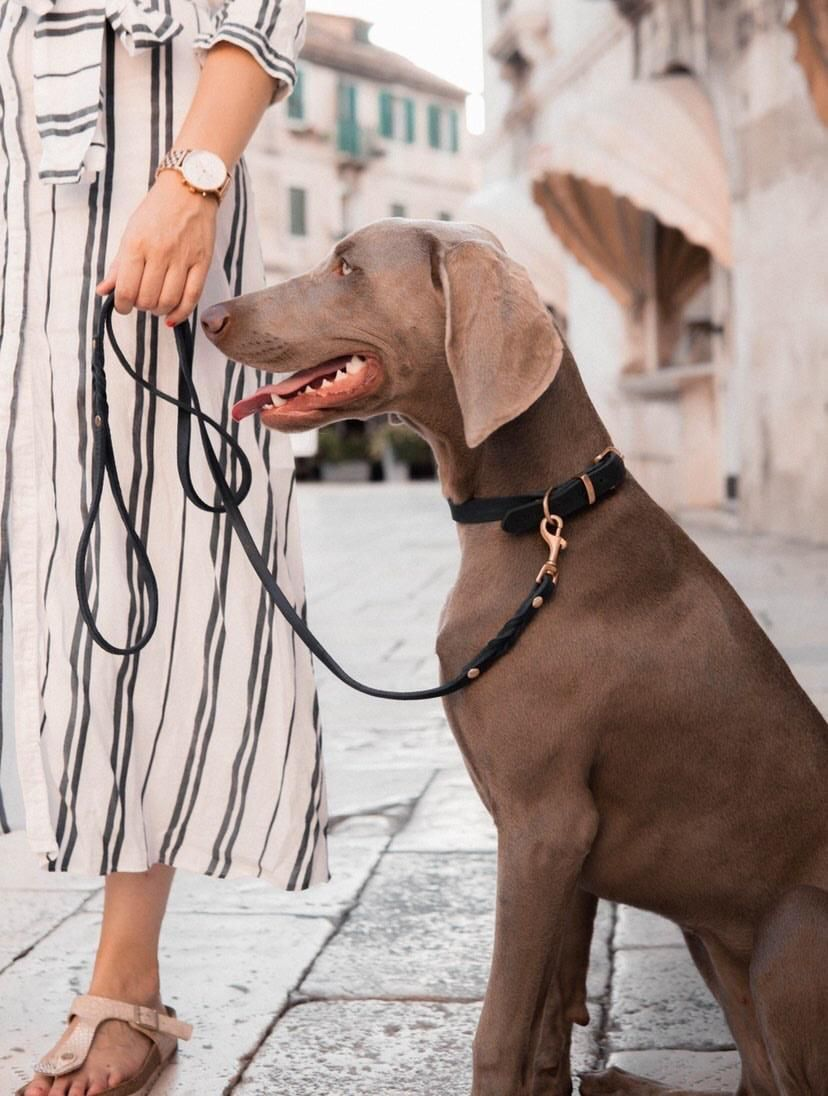 Butter Leather City Dog Leash - Navy Blue