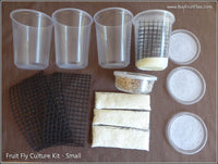 Fruit Fly Breeding Kit - Small