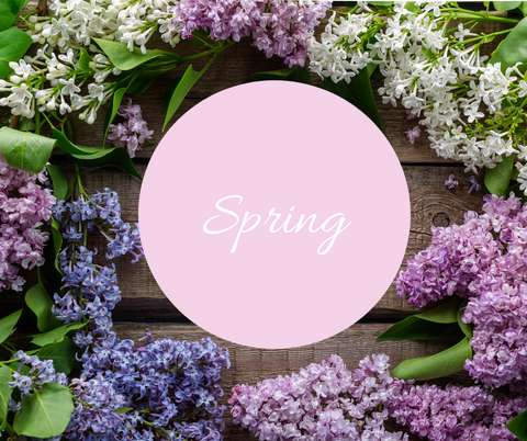 Spring tips at Daisy Farmhouse Stand