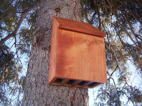 The Great Alaskan Bat House Plans