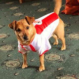 Sunderland AFC Pet Shirt