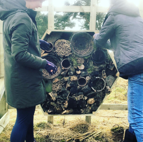 Adding the finishing touches to our bug hotel.