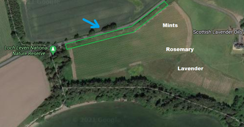 Map of how the trees will help stop wind over the lavender