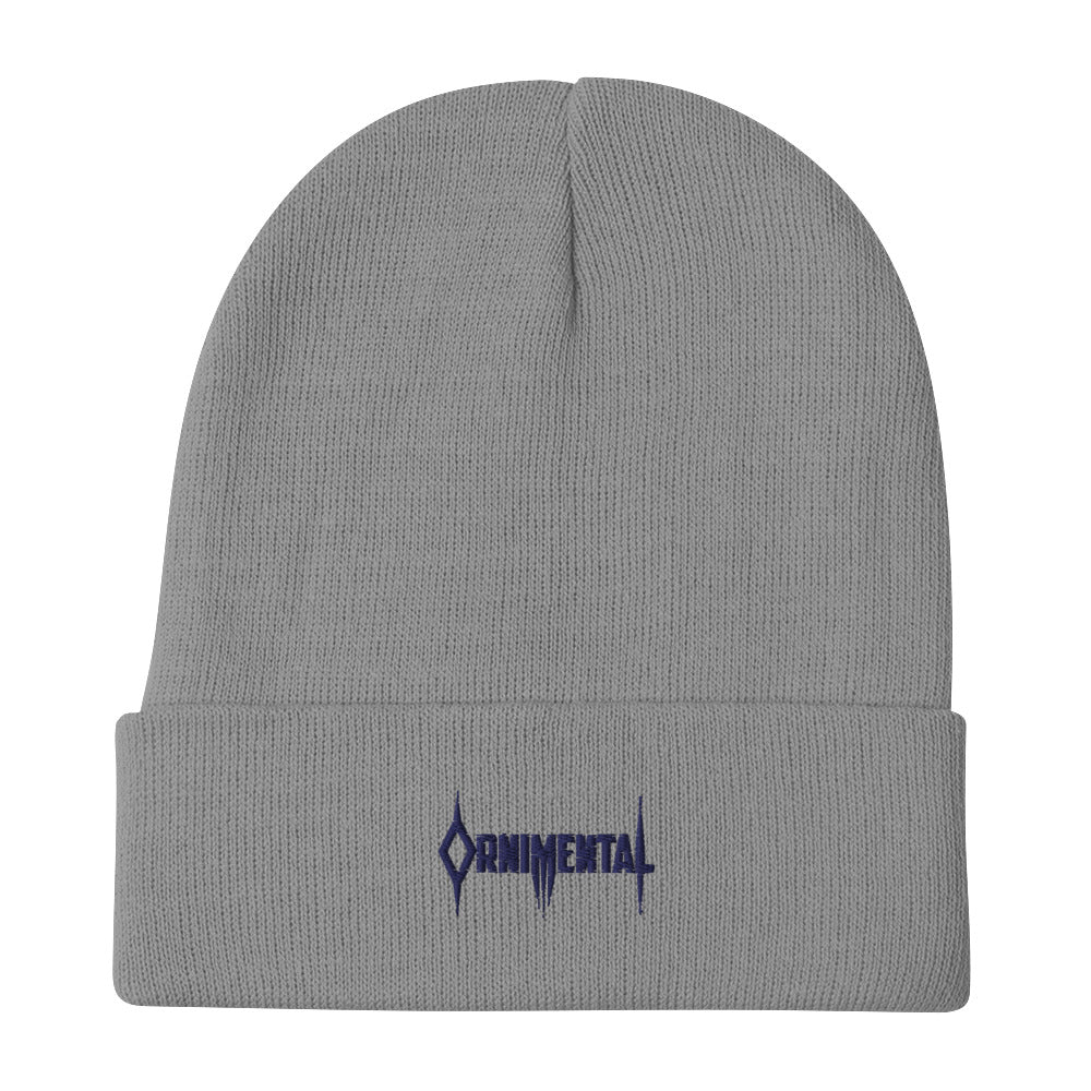 Ornimental Embroidered Beanie