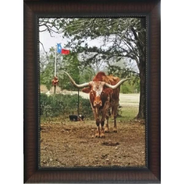 Texas Longhorn Canvas