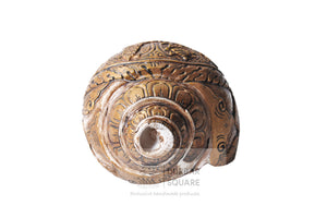 Ashtamangal & Buddha engraved Conch shell