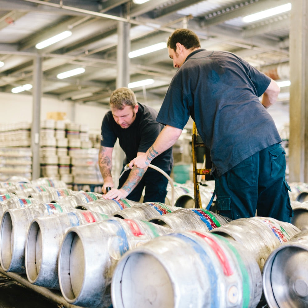 Professional Brewers with barrels of beer, containing beer that uses English Hops. British Hops.