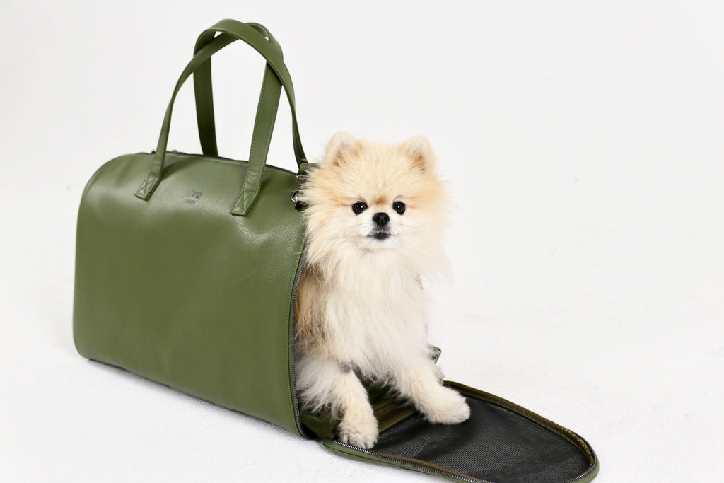Frank Dog Carrier